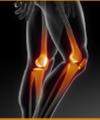 Daphnis Goncalves De Souza: Ortopedista
