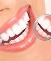 Rafael Alves Ferrari: Cirurgião Buco-Maxilo-Facial, Dentista (Clínico Geral), Dentista (Dentística), Dentista (Estética), Dentista (Ortodontia), Dentista (Pronto Socorro), Implantodontista, Odontogeriatra, Periodontista e Prótese Dentária